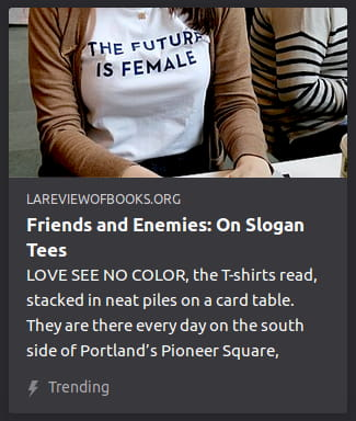 "By La Review of Books. Photo is a close up o' a woman's chest. Her shirt has the words ""The Future Is Female"" on it."