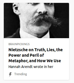 Photo o' Nietzsche's sexy moustache.
