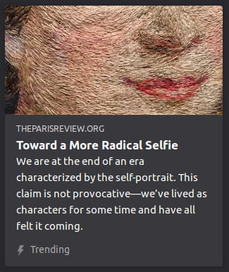 "By The Paris Review. Picture o' some rando's nose & mouth with the impressionist Photoshop filter applied to it. ""We are at the end of an era characterized by the self-portrait. This claim is not provocative—we've lived as characters for some time and have all felt it coming."""