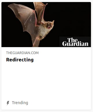 By the Guardian. Photo o' a bat hissing @ the camera in front o' a black void.